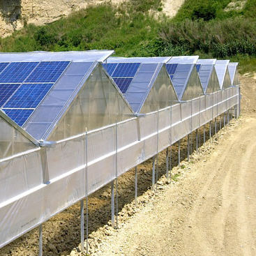 Polykristallines Photovoltaik Modul Indach Fur Gewachshauser