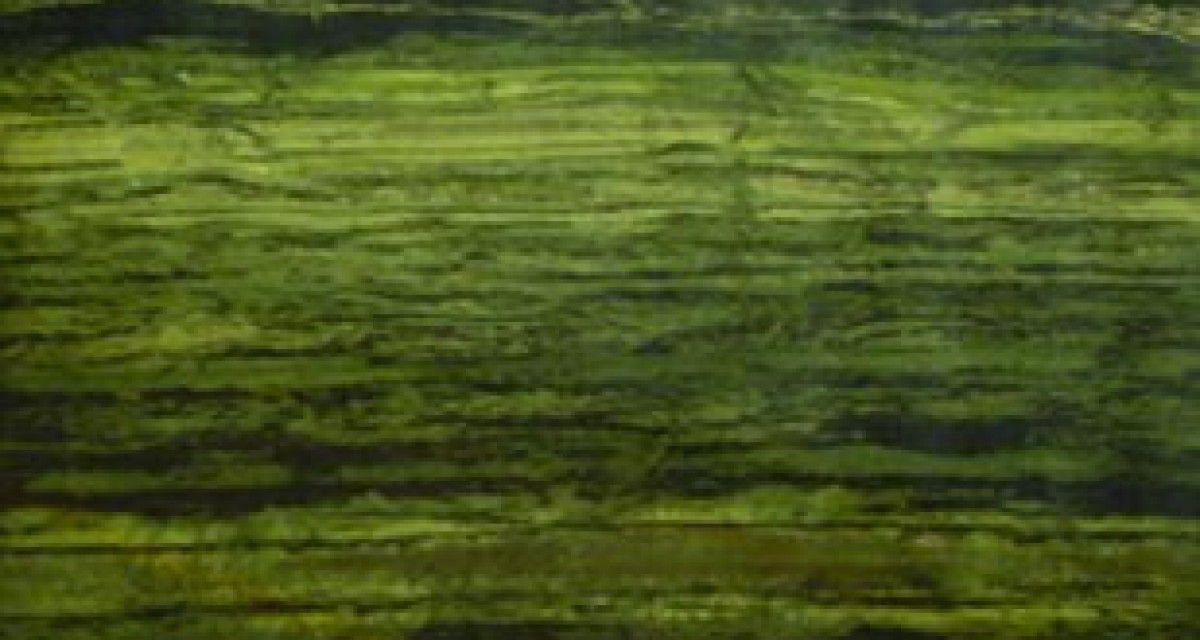 quarzit-arbeitsplatte / aus naturstein / küchen - verde bamboo