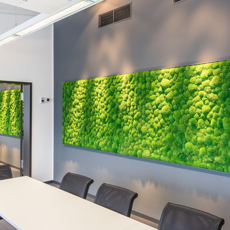 Wandbegrünung stabilisierte wandbegrünung modulare platte innenraum