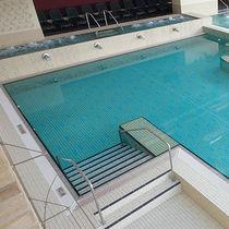 Fliesen für Badezimmer / für Schwimmbecken / für Wände / Fußboden