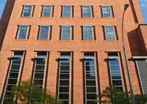 Vertikalschiebefenster / Edelstahl / Wärmedämmungen / für Geschäftsgebäude