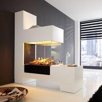 Elektrischer Kamin / modern / Geschlossene Feuerstelle / einbaubar