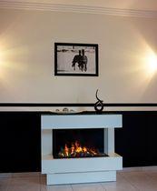 Geschlossene -Feuerstelle für Kamine / elektrische / 1 Sichtseite / aus Metall