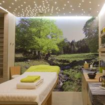 LED Paneel / für Sternenhimmeldecke / für Lichtdecken