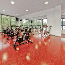 Polyurethan-Sportboden / für Innen / für Mehrzweck-Sporthallen