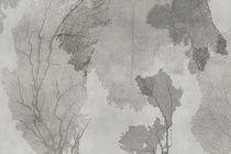 Moderne Tapeten / Vinyl / mit Naturmotiv