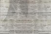 Moderne Tapeten / Vinyl / mit Naturmotiv / Holzoptik