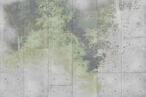 Moderne Tapeten / Vinyl / mit Naturmotiv / Betonoptik