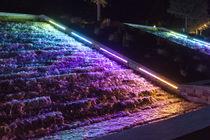 Aufbauleuchte / LED RGBW / linear / für Außenbereich