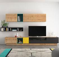 Moderne Wohnwand / aus Eiche / lackiertes Glas