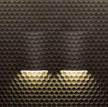 Innenraum-Fliesen / für Wände / aus Marmor / aus Naturstein