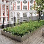 Randstein für Gründach / aus Aluminium / linear