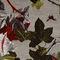 Möbelstoff / Wand / Blumenmotive / aus PA