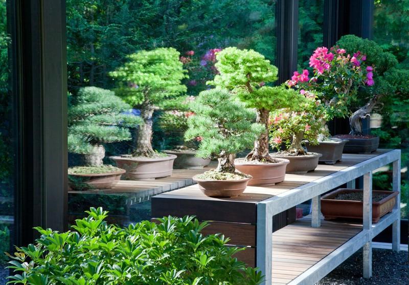 Wintergarten Design Mit Teestube In Einem Modernen Stil - 2015-05 ... Wintergarten Design Mit Teestube Bilder