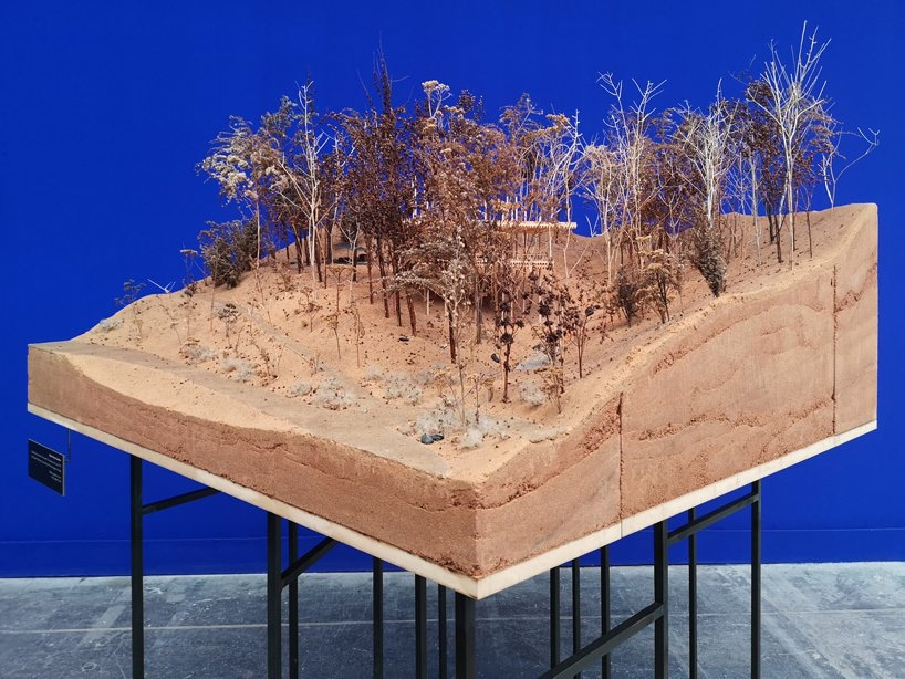 Peter Zumthor Architektur | Peter Zumthor Setzt Eine Werkstatt Von Modellen Auf Anzeige An Der