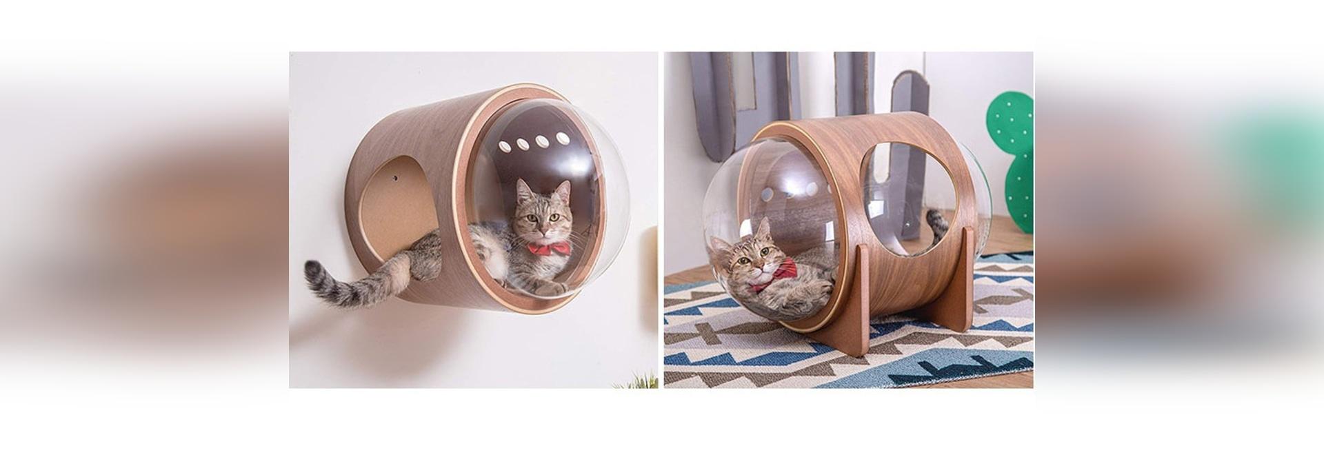 Raumschiff spornte Sache Cat Beds Ares A jetzt an