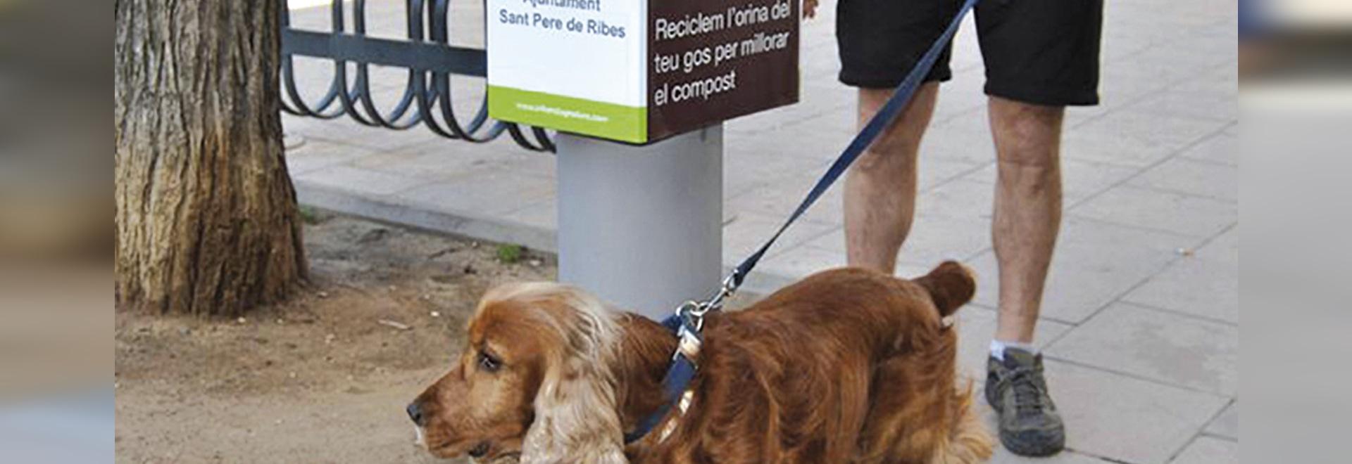 Städtischer Hundeurin-Kollektor installierte
