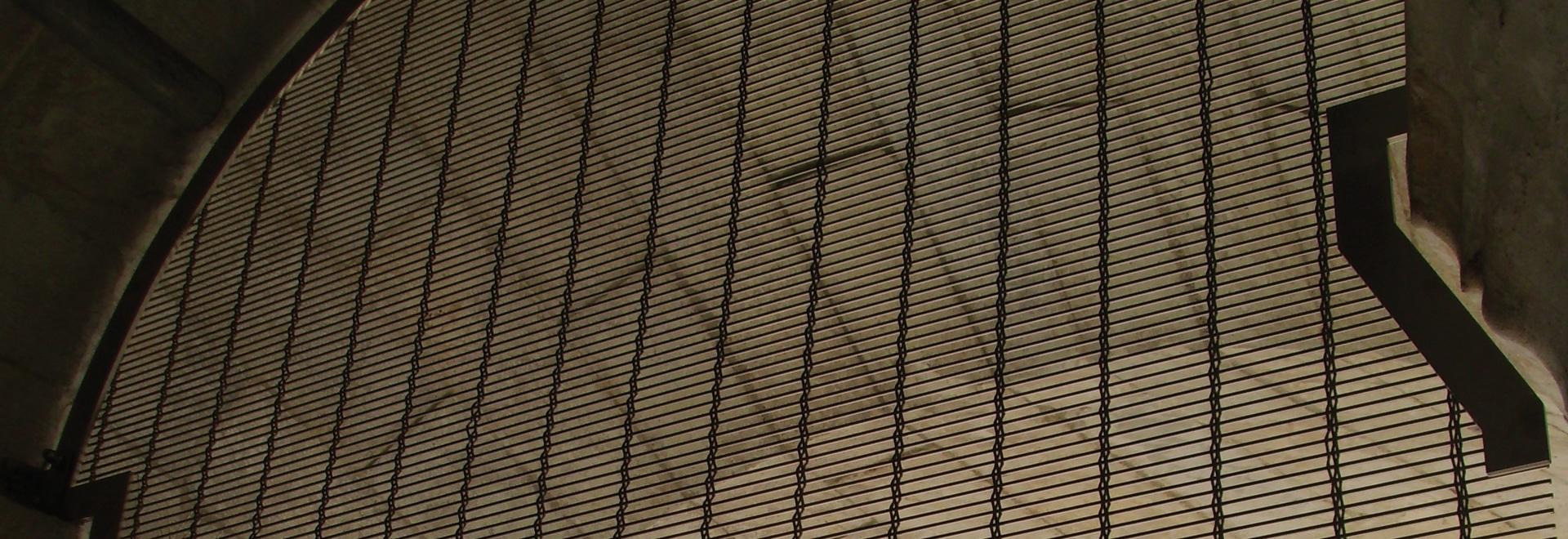 Vogelschutz am Turm von Pisa