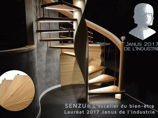 Das Treppenhaus Senzu durch Treppenmeister ist gerade durch den Preis Janus de L'Industrie gekrönt worden