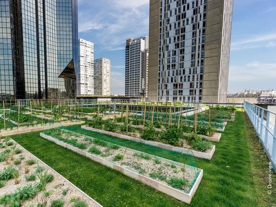 """Der städtische Landwirtschaftsdachgarten auf der Dachspitze von """"Le Cordon bleu"""" in Paris"""