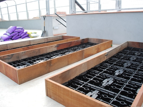 Städtischer Gemüsegarten in der Schule