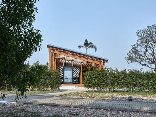 Aufgewachsener Pavillon / Neue Büroarbeiten