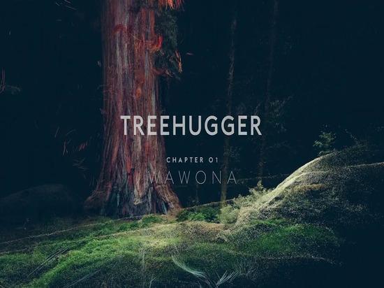 Treehugger-Kapitel 01: WAWONA-harte Nuss von Eibisch-Laser-Fest