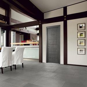 Tür für Innenbereich / einflügelig / Schiebe / faltbar