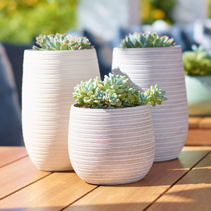 Keramik-Tonkrug