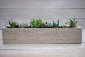 Terrakottapflanzkübel / rechteckig / modern / für öffentliche Bereiche