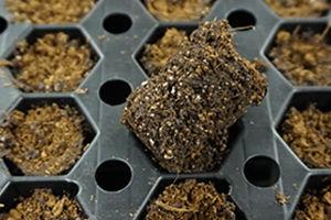 Kokosfaser-Anzuchtsubstrat / Perlit / Schüttgut / absorbierend