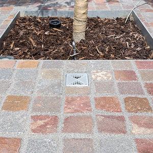 Bäume-Bewässerungssystem