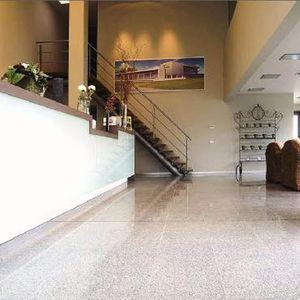 Innenraum-Fliesen / Boden / Granit / poliert
