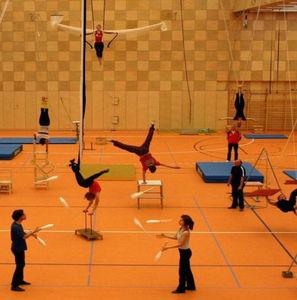 Linoleum-Sportboden / Innenraum / für Mehrzweck-Sporthallen