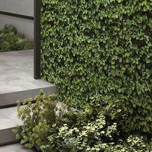 Innenraum-Fliesen / Außenbereich / Wand / Feinsteinzeug