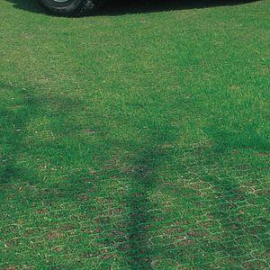 Fliesen-Rasen / befahrbarer / zur Drainage