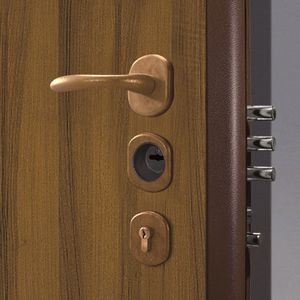 Zylinder-Sicherheits-Türschloss / Hochsicherheit