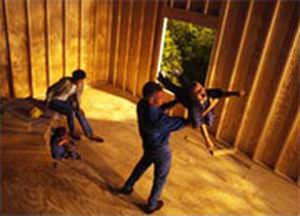 Paneel für Bauanwendungen