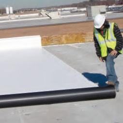 Holzpaneel für Bauanwendungen / für Böden / für Dächer / zur Wanddickenmessung