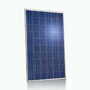 polykristallines Photovoltaik-Modul