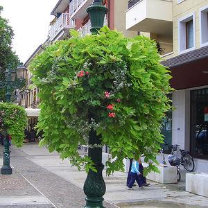 Blumenkastenhalter für öffentliche Bereiche