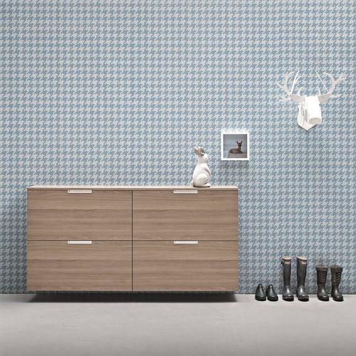 moderner Schuhschrank / Holz