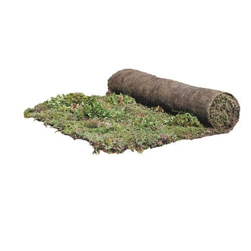 Vorkultivierte Vegetationsmatte / für Dachterrassen
