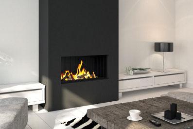 Gaskamin / Multibrennstoff / Holz / modern