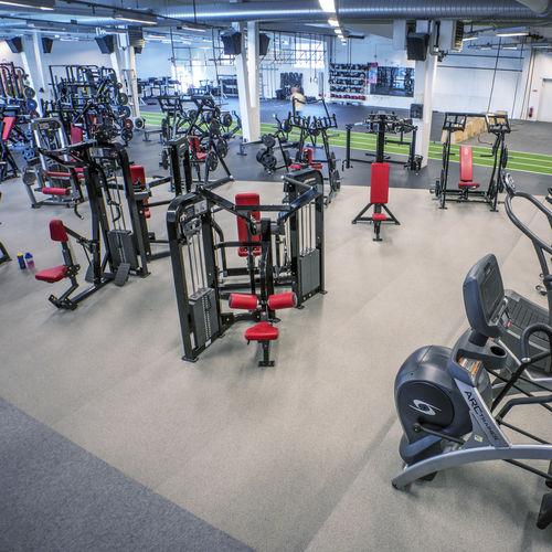 Gummi-Sportboden / aus EPDM / Innenraum / für Leichtathletik
