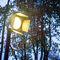 Leuchtpoller für Privatgebrauch / modern / Metall / LED