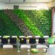 stabilisierte Wandbegrünung / lebende Pflanzen / natürlich / Innenraum