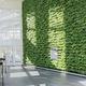 stabilisierte Wandbegrünung / lebende Pflanzen / modulare Platte / natürlich