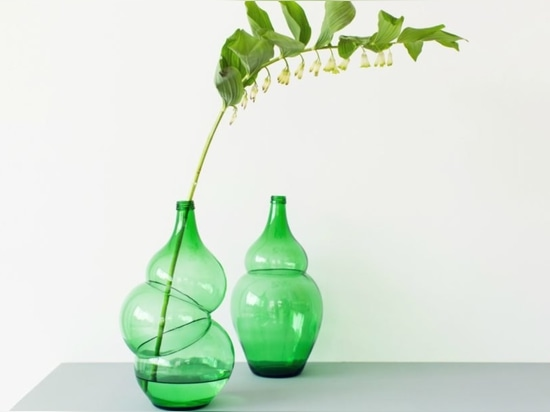 Klaas Kuiken macht allgemeine grüne Flaschen zu unglaubliche Vasen mit diesem klugen Trick