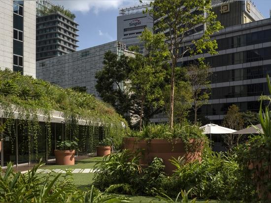 """Inkubator """"Design Obstgarten"""" / WOHA"""